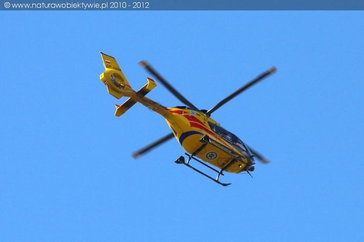 Eurocopter EC 135P2+