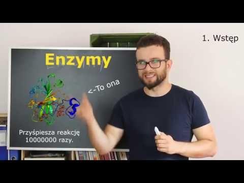 # Zlewka na maturę - Enzymy cz.1 - YouTube