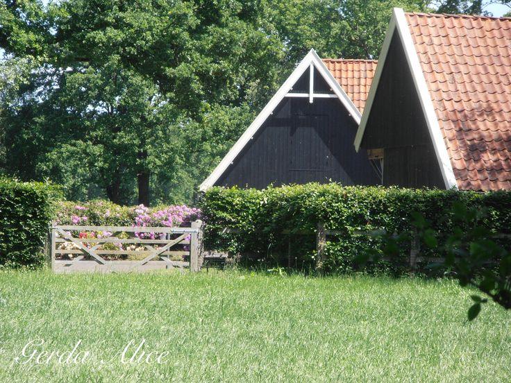 Twente * The Netherlands * Gerda Alice