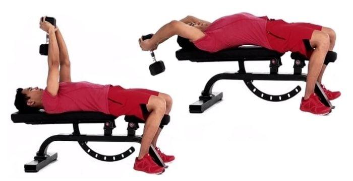 Пуловер с гантелью лежа на горизонтальной скамье является односуставным изолированным упражнением для развития трицепса и мышц груди (большая грудная мышца)