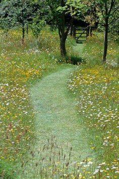 Mown path through wild flower meadow. Pinned to Garden Design by Darin Bradbury.