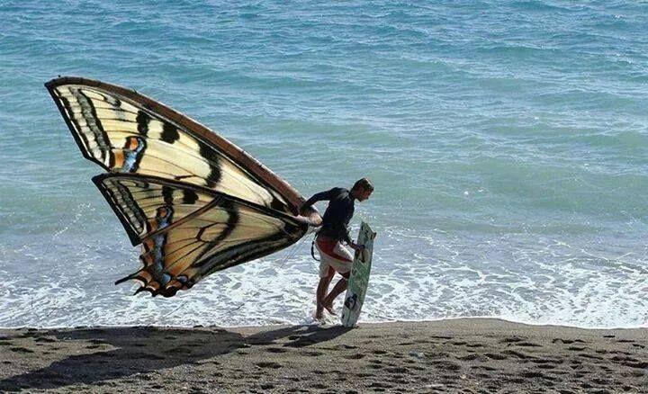 Sottomarina Kite - Su Sottomarina Kite puoi ordinare OnLine tutto ciò che ti serve per praticare Kitesurfing, Windsurfing, Surfing e Sup! www.sottomarinakite.it