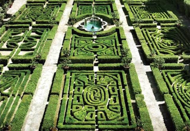 Risultati immagini per orti botanici eccellenze italiane