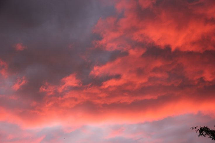 Hvis jeg var maler, var skyerne mit yndlingsmotiv - tror jeg!