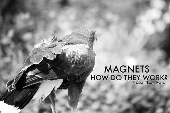 Magnets, how do they work? - insane clown posse rap thug art photography funny meme fine art print og lyrics hip hop gangsta art absurd