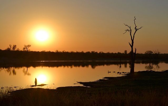 A wild night in a bird hide in the park - Sable Dam at Kruger National Park http://ow.ly/pJiAH