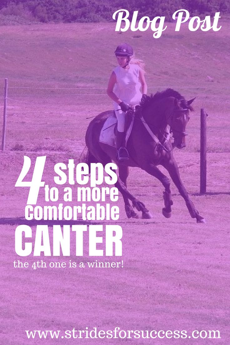 4 Steps to a More Comfortable Canter... (the 4th step is a winner :-)
