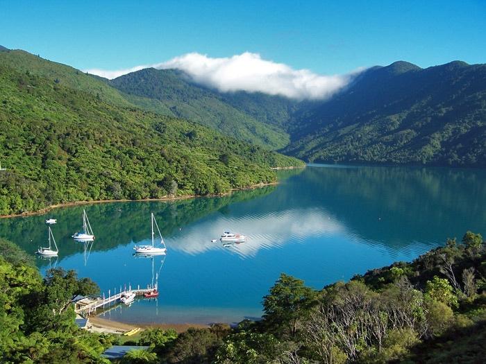 Marlborough Sounds New Zealand  city photos gallery : Marlborough Sounds, New Zealand | Our Travel Photography | Pinterest