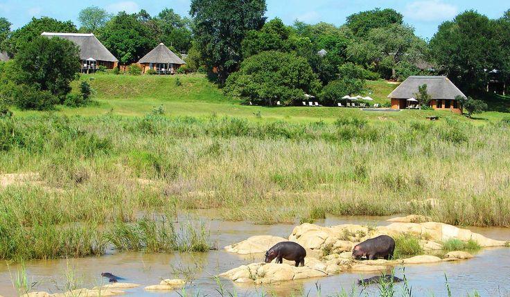 Mala Mala Main Camp > Sabi Sand South > Kruger Private Reserves. South Africa.