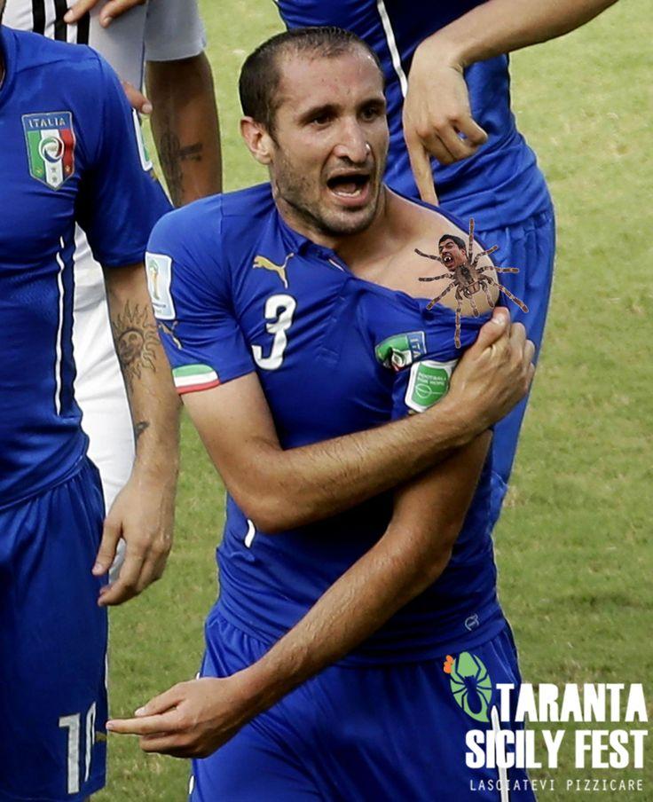 Anche Chiellini morso dalla Taranta! #satira #mondiali2014 #fifa #morso #taranta #sicily #tarantasicilyfest #ofunnu - http://www.tarantasicilyfest.it/