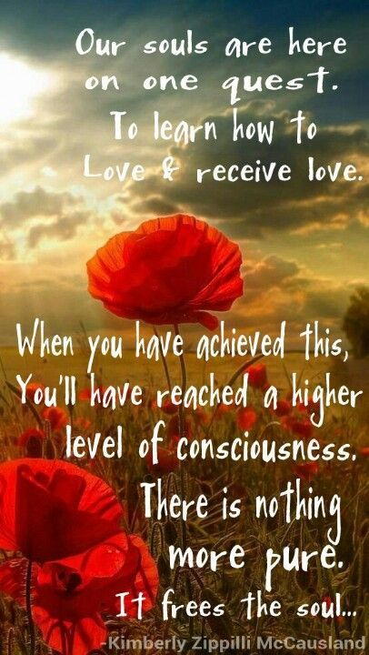 """Kimberly Zippilli McCausland: """"Our Souls are here on one quest : to learn how to Give Love and Receive Love. When you have achieved this, you'll have reached a Higher Level of Consciousness. There is nothing more pure. It frees the Soul…"""""""