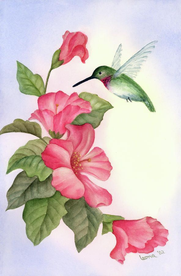 hummingbird paintings | Hummingbird With Hibiscus Painting by Leona Jones - Hummingbird With ...