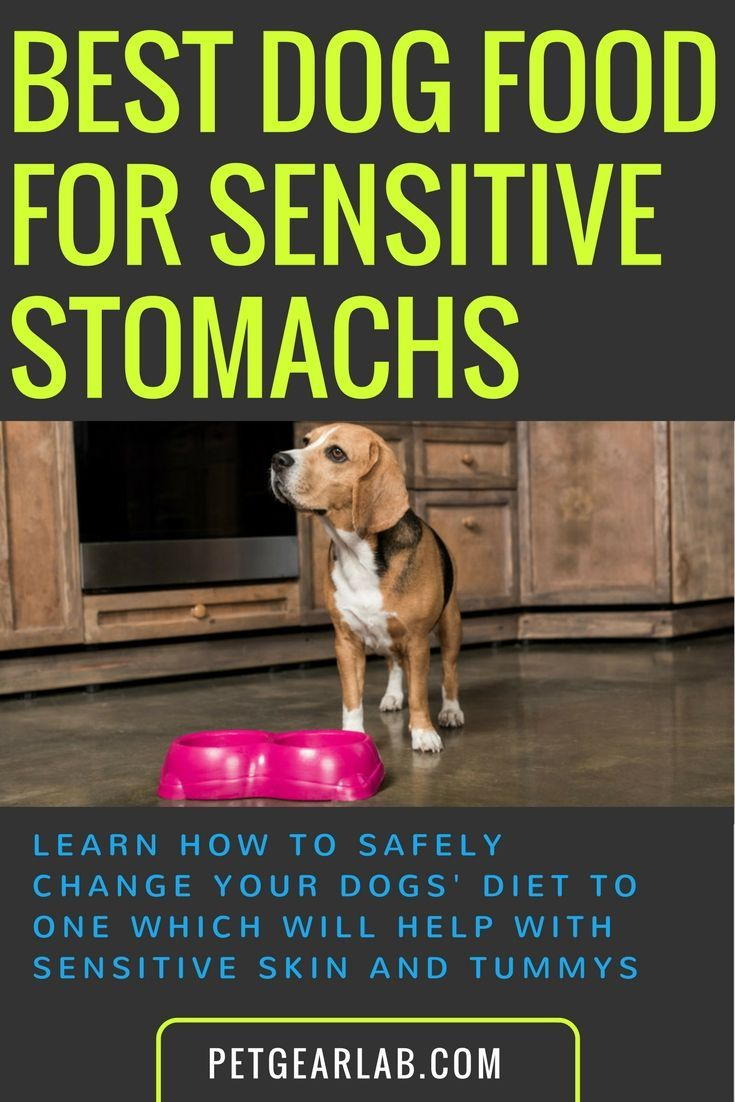 Top 10 Best Dog Food For Sensitive Stomach Rated Reviewed Dog Food Recipes Best Dog Food Sensitive Stomach