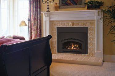 15 Best Fireplace Inserts Images On Pinterest Gas Fireplaces Gas Fireplace Inserts And