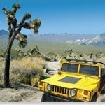 Adventure Hummer Tours - Joshua Tree (visitor center discount)