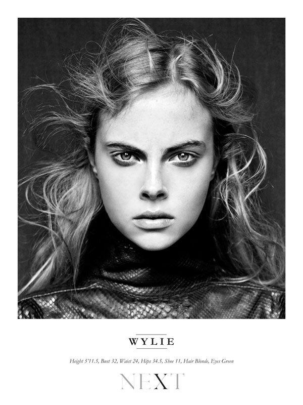Wylie / Next