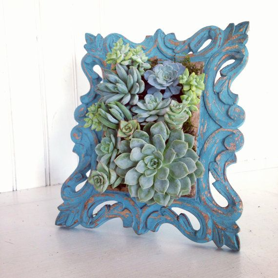 Vertical Succulent Planter Garden by VerticalFlora on Etsy, $80.00