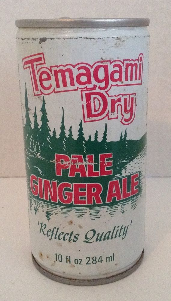 Vintage Temagami Dry pop can