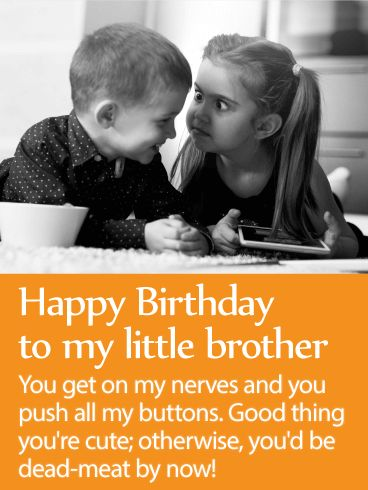 To My Loveable Brother - Happy Birthday Wishes Card: Little brothers-the bane of our existence. They're so gosh darn infuriating and so ridiculously loveable. No matter how big your brother gets, he's still your little brother and can use some friendly teasing to make sure he knows his place! Send your brother this funny birthday card that really nails the truth about younger siblings! Give your brother a good laugh on his birthday and send this fun birthday card.