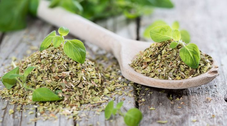 Slow Down The Signs Of Aging With These 5 Herbs