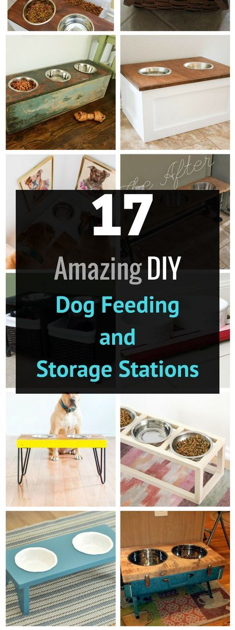 25 Best Ideas About Dog Feeding Station On Pinterest