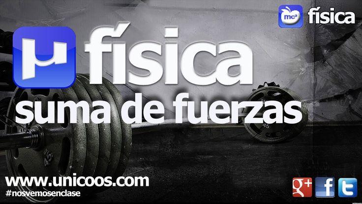 FISICA Suma de fuerzas y descomposicion vectorial 02 SECUNDARIA (4ºESO)