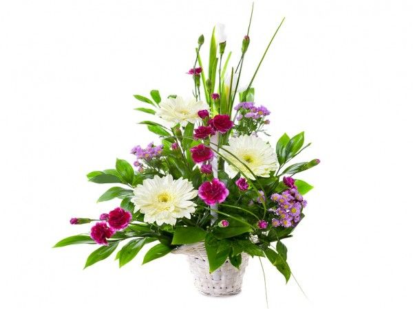 This pretty arrangement will stay in the mind of the person you give it to, as being something special, with its simple combination of flowers that spray out of the basket as if calling out to be noticed. Suitable for any occasion