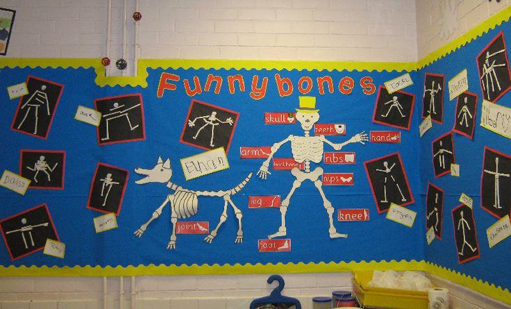 Funnybones classroom display photo - Photo gallery - SparkleBox