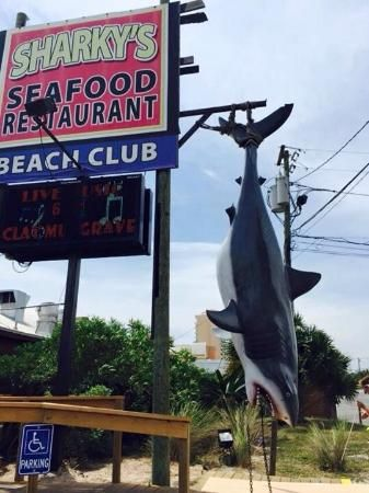 Sharky S Beach Front Dining Panama City Fl Great Atmosphere