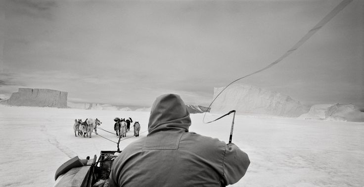 Greenland, Ingelfieldfjord. Hunters with a narwhal.Série: Last Days of the Arctic, Photo: Ragnar Axelsson,