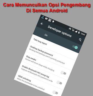 Tutorial Android Indonesia: Cara Memunculkan Opsi Pengembang Di Semua Android