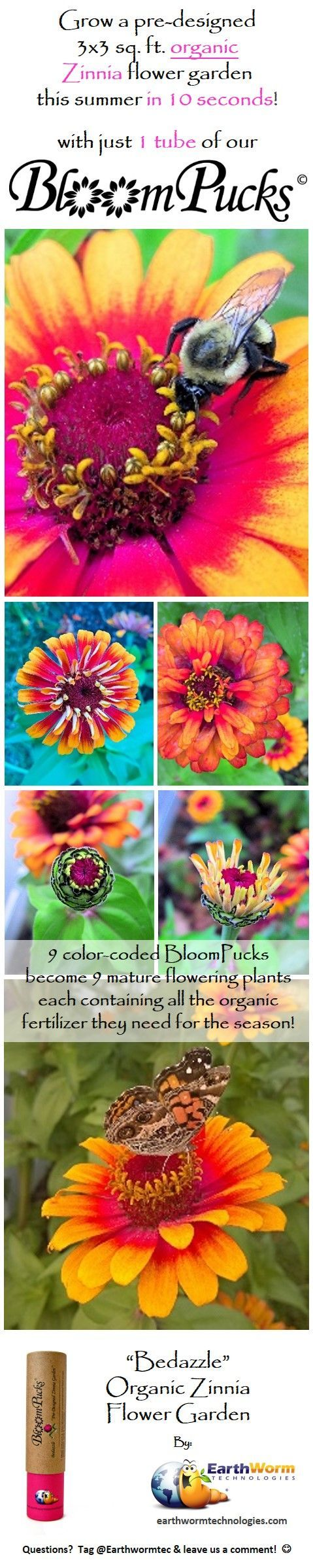 "This year for Mother's Day - give her an eco-friendly gift that keeps on giving. Easily grow a gorgeous 9 square foot organic Zinnia Flower Garden with just 1 tube of our ""Bedazzle"" BloomPucks (containing 9 BloomPucks that each grow into a fully mature plant blooming all Summer into Fall). They are color-coded (3 each of 3 different types of Zinnias growing at different heights & colors). Follow our included layout & take seconds to push each BloomPuck into the soil, water & enjoy the show."