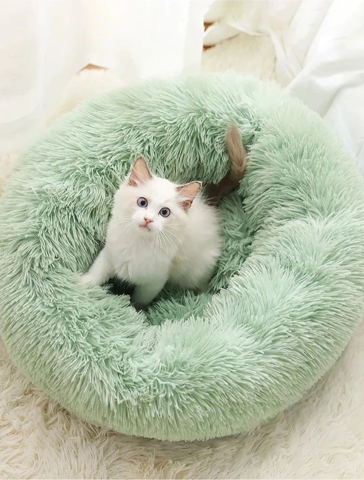 Calming Pet Bed in 2020 Cute baby animals, Cute animals