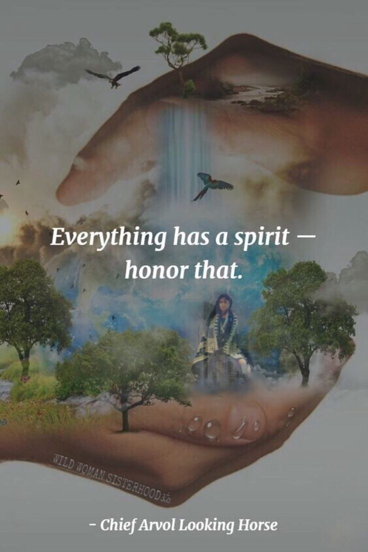 Everything has a Spirit - Honor that.. - Chief Arvol Looking Horse. PhotoArt: Shikoba. WILD WOMAN SISTERHOODॐ || ancient wisdom ||  native american quotes || Gaia ||