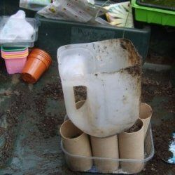 Use a milk jug as a scoop/funnel for filling toilet paper rolls with potting soil for starting plants from seed.: Milk Jug, Recycling, Garden Gardening Ideas, Plastic Milk Bottles, Recycle Bottle, Plants Garden, Gardening Hints Ideas