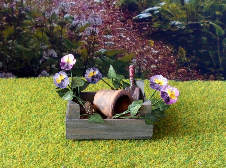 7 best Mes bonsaïs glycine images on Pinterest | Branches ...
