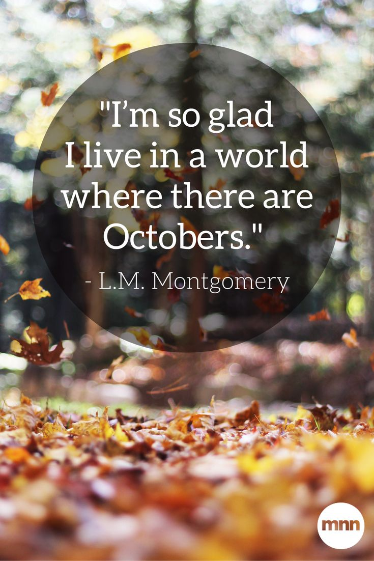 """I'm so glad I live in a world where there are Octobers."" ― L.M. Montgomery"
