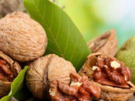 Что лечат перегородки грецкого ореха