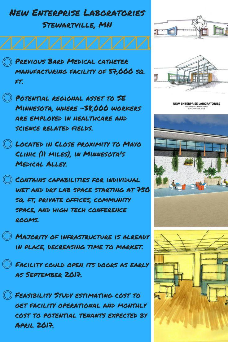 rochester regional health labs brighton ny