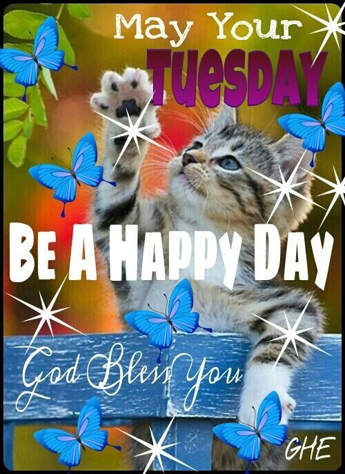 May Your Tuesday Be Happy quotes quote days of the week good morning tuesday tuesday quotes happy tuesday tuesday quote
