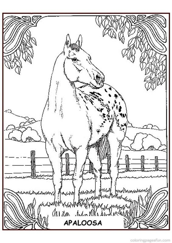 454 Best Images About Coloring Pages Horses Unicorns And