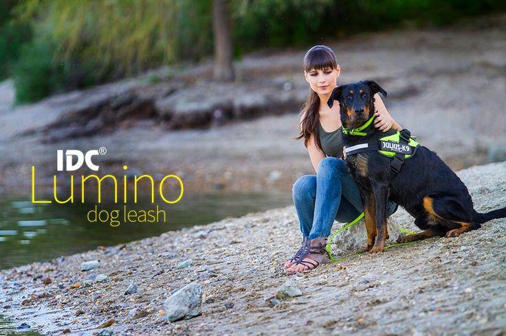 IDC Lumino - leashes and collars http://en.original-k9.de/index.php/dog-gear/leashes/idc-lumino-leash