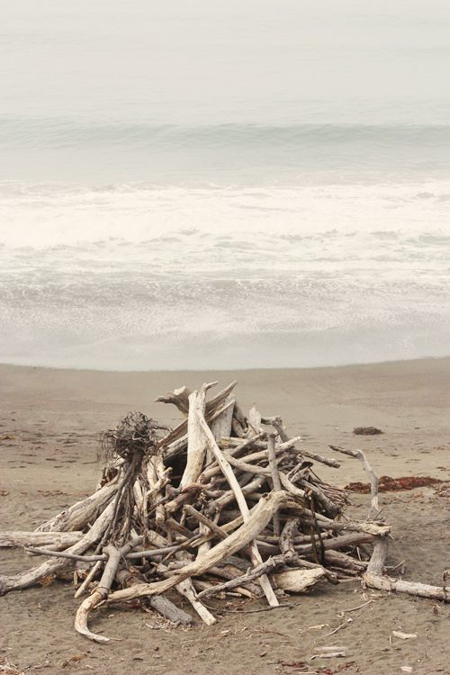 reminds me of collecting driftwood on texas beaches where we camped gulf side. reminds me also of getting my company car stuck in the sand :)