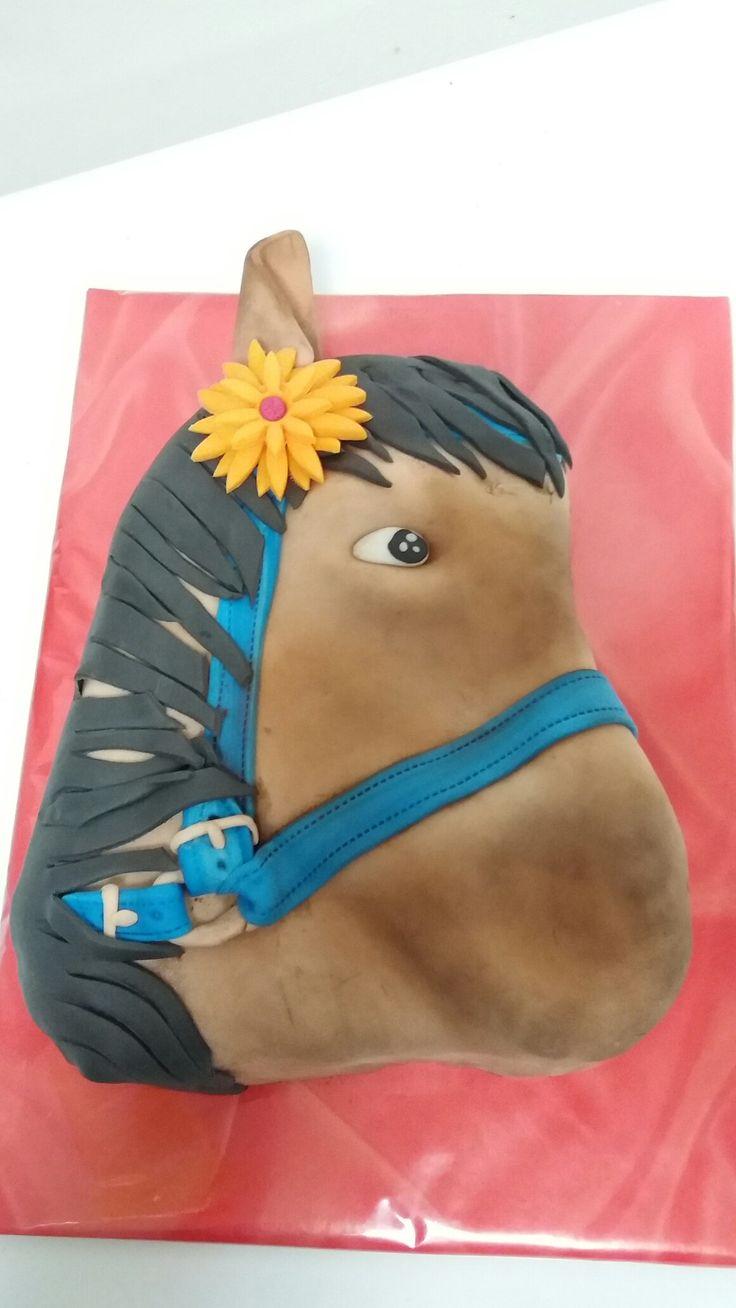 Kůň 2,1 kg