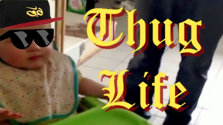 THUG LIFE VIDEOS DAHORA | FUNNY VIDEOS
