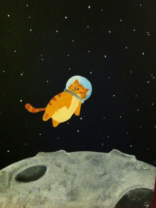 Space Cat the Final Furntier by PrimlockSpecial3 on Etsy