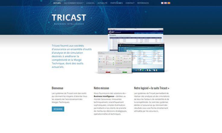 Tricast - http://tricast-group.metropolemedia.com