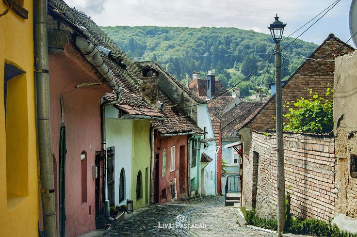 Rural Colors II by Liviu Pascalau