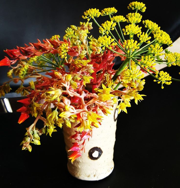 Weekly posy - fennel, succulent flowers