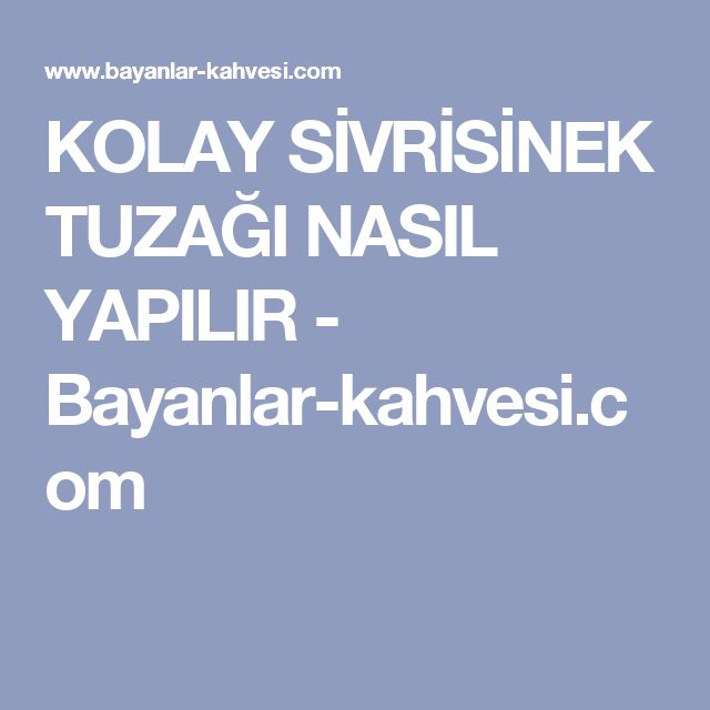 KOLAY SİVRİSİNEK TUZAĞI NASIL YAPILIR - Bayanlar-kahvesi.com